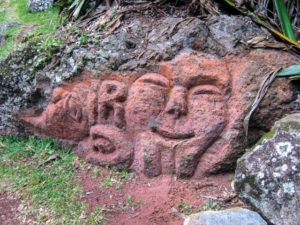 Tikatsou nature : de la rivière à la Colline